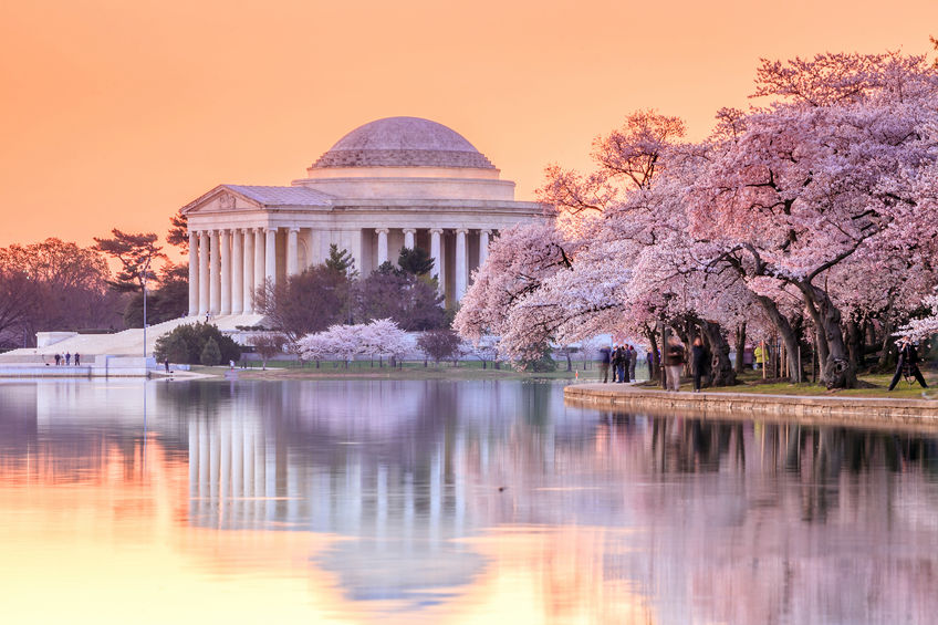 Washington D.C. Architecture – Finding the Best of Pope